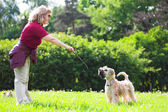 Woman ad her dog on green grass — Stock Photo