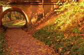 Brick bridge in the autumn forest — Stock Photo