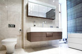 Bathroom with Mirror and pan — 图库照片