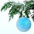 Blue ball on fir branch — Stock Photo