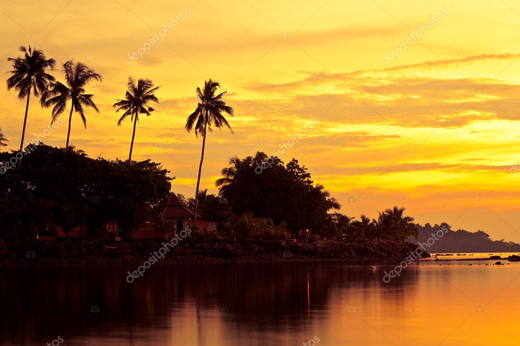 Coconut palms on sand beach in tropic on sunset. Thailand, Koh Chang, Kai Bae beach — Stock Photo #1505921