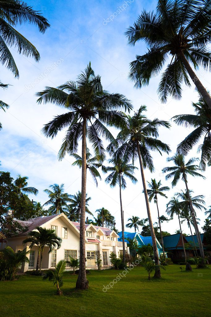 Modern bungalows and palms. Thailand, Koh Chang, Kai Bae beach  Foto Stock #1505955