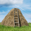 Haystack — Stock Photo #1176433