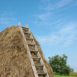 Haystack — Stock Photo #1207550