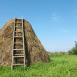 Haystack — Stock Photo #1218934