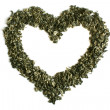Heart from green tea — Stock Photo #1225034