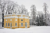 Historical house in winter park — Stock Photo