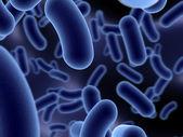 Microbes — Stock Photo