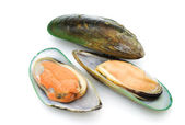 Green mussels — Stock Photo