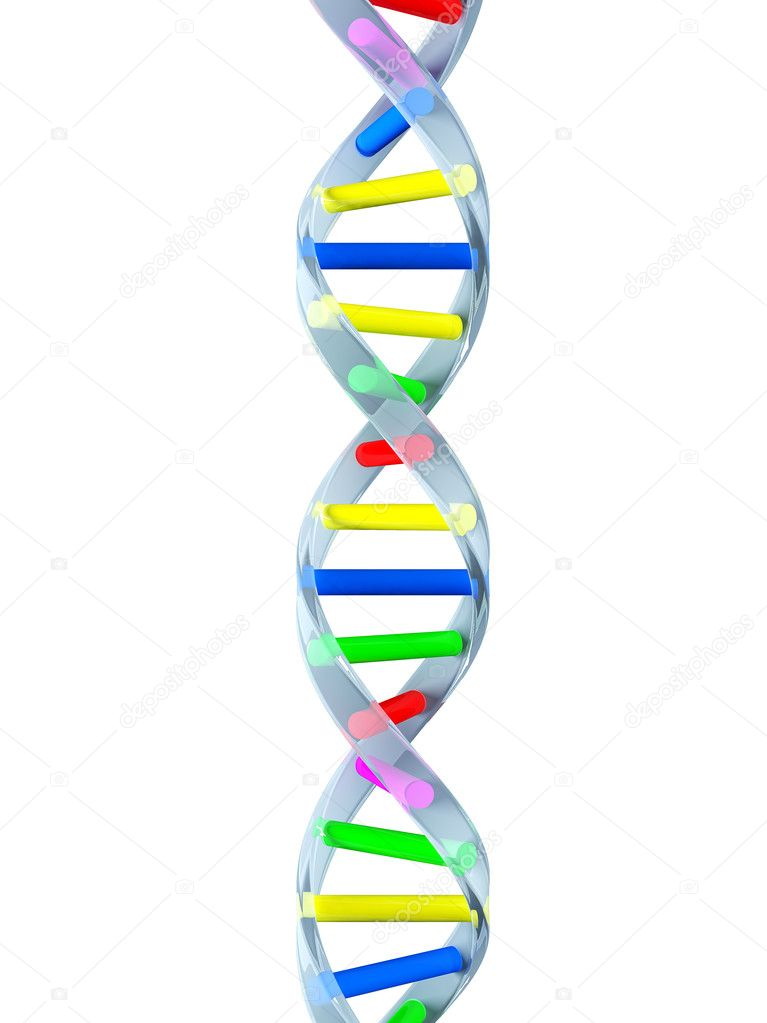 DNA strand — Stock Photo #1298098