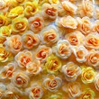 Bunch of multi-colored roses packed tigh — Stock Photo