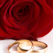 Two gold wedding bands beside a red rose — Stock Photo