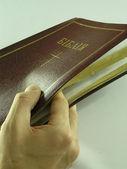 Bible — Stock Photo