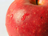 Kırmızı elma 2 — Stok fotoğraf
