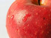 Rött äpple 2 — Stockfoto