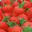 Strawberries — Stock Photo #1202268