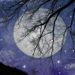 Full moon — Stock Photo #1202295