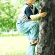 Tree-climber — Stock Photo #1203090