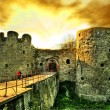 Ancient castle - Stock Photo