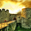 Ancient castle — Stock Photo