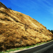 Road in hills — Stock Photo