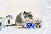 Funny mouse — Stock Photo