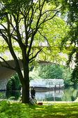 Summer park — Stockfoto