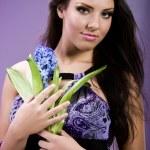 Lilac simphony — Stock Photo