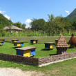 Stock Photo: Apiary in mountains