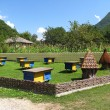 Apiary in the mountains — Stock Photo