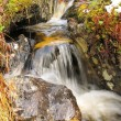 Small waterfall — Stock Photo #1238160