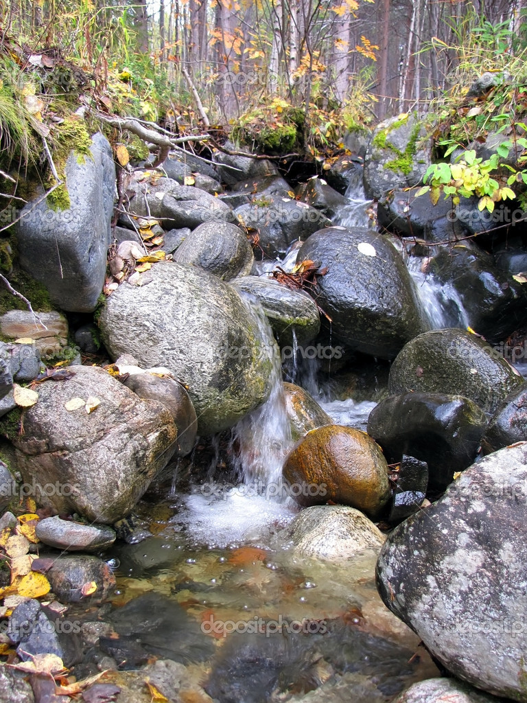 Small waterfall on the creek in the autumn forest                                       — Stock Photo #1237170