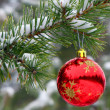 Stock Photo: Red ball on tree