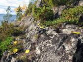 Granite rock — Stock Photo
