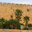 Stock Photo: Jerusalem, old city walls