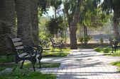 Park in sunny day — Stock Photo