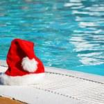 Tropical christmas — Stock Photo #1190026