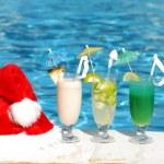 Tropical christmas — Stock Photo