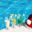 Tropical christmas - Stock Photo
