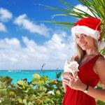 Caribbean christmas — Stock Photo