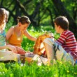 Friends on picnic — Stock Photo #1200434