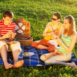 Friends on picnic — Stock Photo #1200540