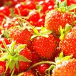 Red currant & strawberry in basket — Stock Photo
