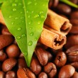 Royalty-Free Stock Photo: Coffee beans and cinnamon