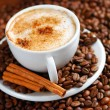 capuchino — Foto de Stock