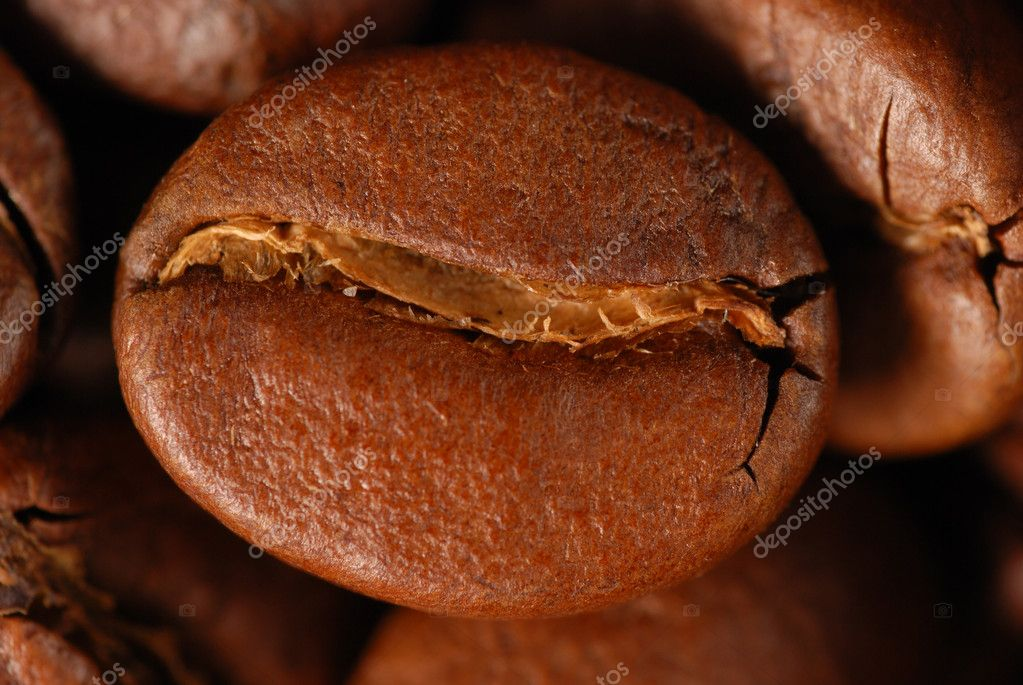 Coffee bean extreme close up — Stock Photo #1200832