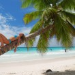 Relax on palm — Stock Photo #1537561
