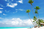 Caribbean beach — Stockfoto