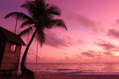 Caribbean sunset — Foto Stock