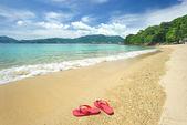 Pláž žabky — Stock fotografie
